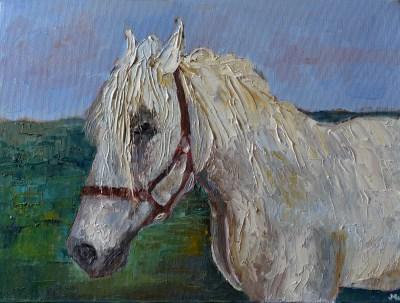 Konie Obraz Olejny Z Końmi